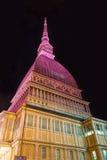 A toupeira cor-de-rosa Antonelliana, Turin Foto de Stock Royalty Free
