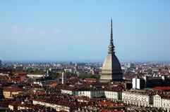 Toupeira de Turin imagem de stock royalty free