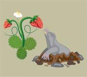 Toupeira e morango selvagem. ilustração royalty free