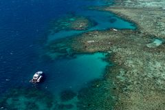 Snorkeling on the Great Barrier Reef royalty free stock image