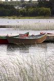 Tour boats Royalty Free Stock Photos