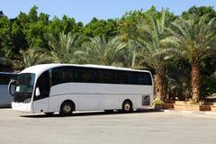 Tour Bus. Blank Tour Bus and palm trees Royalty Free Stock Photos
