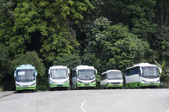The tour buses Royalty Free Stock Images