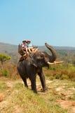 Tour d'éléphant en Chiang Mai, Thaïlande images libres de droits