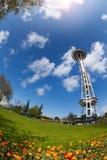 Tour d'aiguille de l'espace avec des tulipes à Seattle Photographie stock