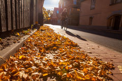 Tour d'automne photo stock