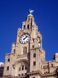 Tour d'horloge de construction de foie image libre de droits