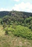Tour d'Outlook sur la roche au-dessus de la forêt photographie stock libre de droits