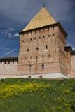 Tour d'une forteresse Photo libre de droits