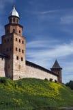 Tour d'une forteresse Photos libres de droits