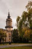 Tour d'université Photographie stock libre de droits