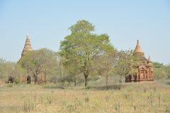Tour de Bagan Pagoda photos stock
