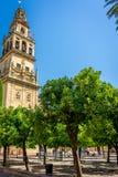 Tour de Bell et Patio de los Naranjos de la Mosquée-cathédrale, t Photographie stock libre de droits