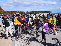 Tour de Bronx NYC Royalty Free Stock Image