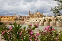 Tour de Calahorra et le pont romain Cordova l'espagne Photos stock