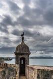 Tour de Castillo San Felipe del Morro avec le pélican sur le dessus Images stock