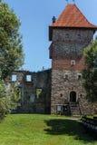 Tour de château Photographie stock