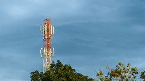 Tour de communication derrière les arbres Images libres de droits