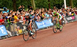 Tour de France à Londres, R-U Images stock