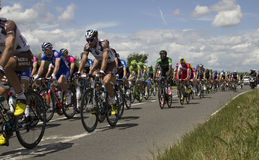 Tour de FrancePelotonetapp 2014 3 royaltyfri bild