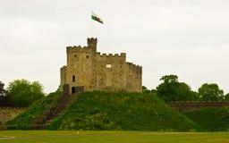 Tour de guet de château sur la côte Image stock