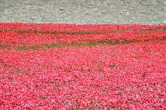 Tour de Londres avec la mer des pavots rouges pour se rappeler les soldats tombés de WWI - 30 août 2014 - Londres, R-U Images libres de droits