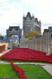Tour de Londres avec la mer des pavots rouges pour se rappeler les soldats tombés de WWI - 30 août 2014 - Londres, R-U Photo libre de droits