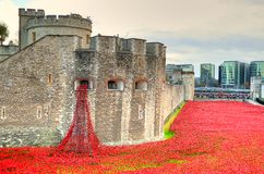 Tour de Londres avec la mer des pavots rouges pour se rappeler les soldats tombés de WWI - 30 août 2014 - Londres, R-U Images stock