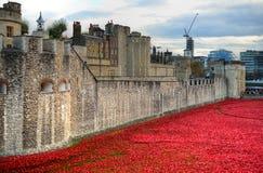 Tour de Londres avec la mer des pavots rouges pour se rappeler les soldats tombés de WWI - 30 août 2014 - Londres, R-U Photos stock