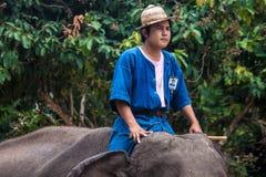 Tour de Mahout un éléphant Images stock
