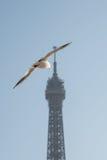 Tour de Paris Image libre de droits