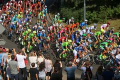 Tour de Pologne peloton Royalty Free Stock Photography