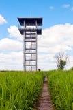 Tour de région et de surveillance de marais Image libre de droits