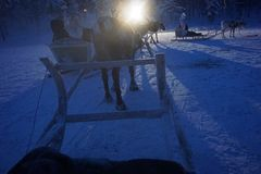 Tour de renne Images stock