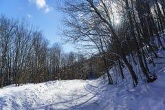 Tour de route d'hiver dans un jour ensoleillé d'espace libre neigeux de forêt Adygea, un plateau de Lago-Naki Photo stock