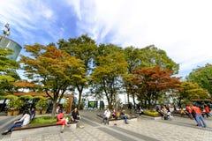 Tour de Séoul de parc de Namsan : Corée Photo stock
