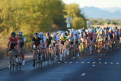 2012 Tour de Scottsdale cycling race. SCOTTSDALE, AZ - OCTOBER 14: Cyclists compete in the 9th annual Tour de Scottsdale, a 70-mile charity bicycle race Royalty Free Stock Image