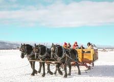 Tour de Sleigh dans un traîneau ouvert de trois chevaux photos libres de droits