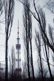 Tour de télévision de Kyiv en brume d'hiver Photographie stock libre de droits