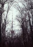 Tour de télévision de Kyiv en brume d'hiver Images stock