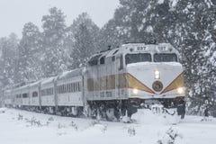 Tour de train d'hiver Photographie stock libre de droits