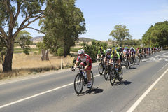 Tour Down Under 2016 - Womens Royalty Free Stock Photography