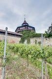 Tour du château d'Esslingen AM le Neckar la grande, Allemagne photo libre de droits