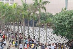 Tour du monde de 1600 pandas en Hong Kong Image stock