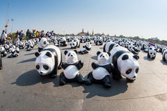 Tour du monde de 1600 pandas par WWF Image libre de droits