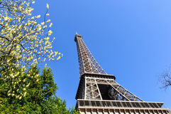 Tour Eiffel à Paris Photo stock