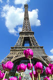 Tour eiffel. A view of famous tour eiffel in Paris Stock Photo
