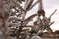 Tour Eiffel. Seen through branches of a Christmas Tree, snowy branches Stock Photos
