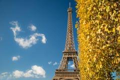 Tour Eiffel au-dessus des feuilles de ciel bleu et de chute Photographie stock libre de droits