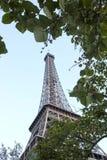 Tour Eiffel en métal entre les feuilles vertes Image stock